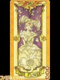 card_ss/crow_003.jpg