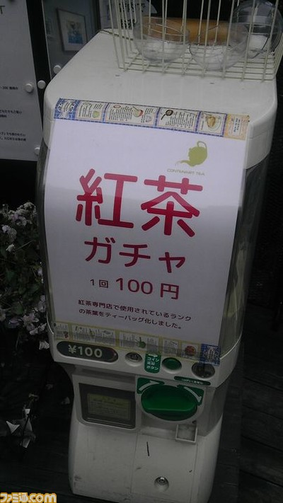 15031903