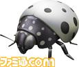 pon_Ladybug_White